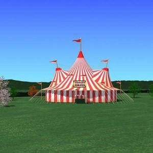 primary experiences circus